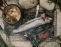 РИБА: КУЛІНАРНЕ НАТХНЕННЯ, ЩО ХОВАЄТЬСЯ НА СТОРІНКАХ СТАРИХ КУЛІНАРНИХ КНИГ